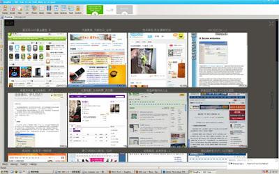 View & Management WebPage Snapshot