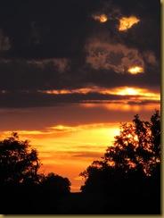 IMG_1986 Sunset