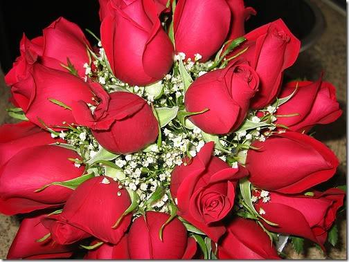 san valentin flores (15)
