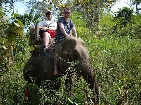 17. Cu elefantul in jungla.JPG