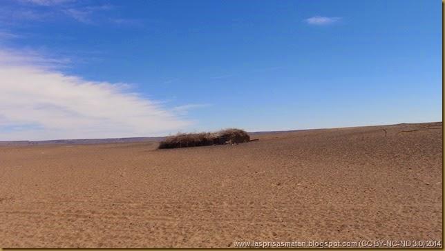 Desierto-419