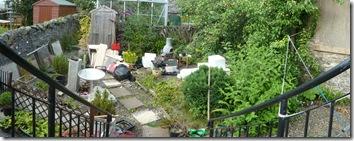 garden July 11