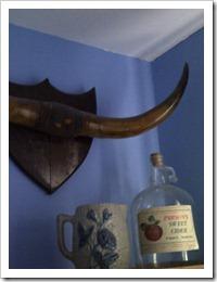 Steer horns