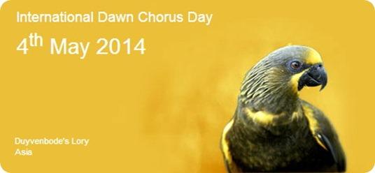 internacional dawn chorus