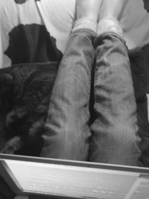 levis_jeans
