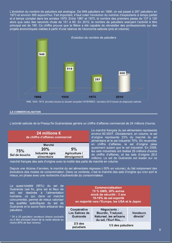 diagnostic_salicole_ca44_2011_page_010