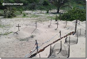 Cemitério de tartarugas