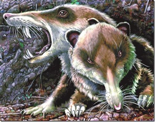 Ilustración por Jorge Gonzales