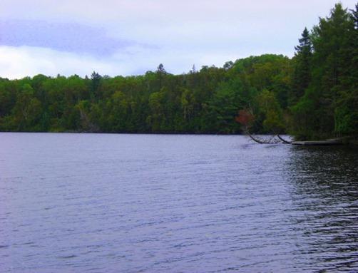 Lake 2011