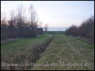 Passeggiata al Dosolo - 1 gennaio 2013 (60)