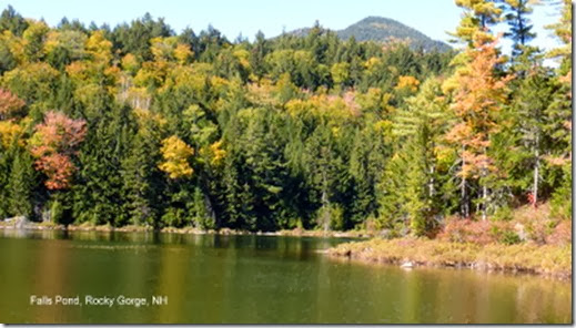 Falls Pond, Rocky Gorge, NH