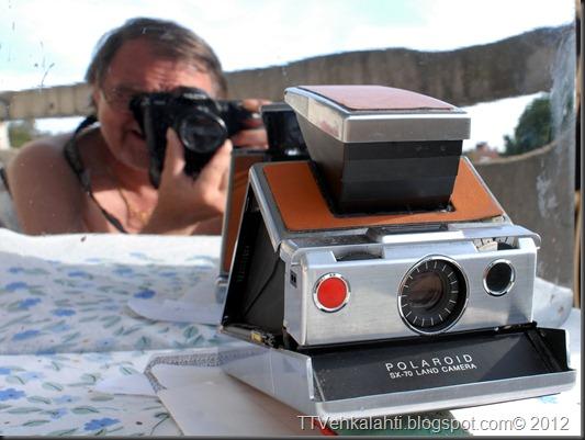 sitruuna per. polaroid SX-70 058