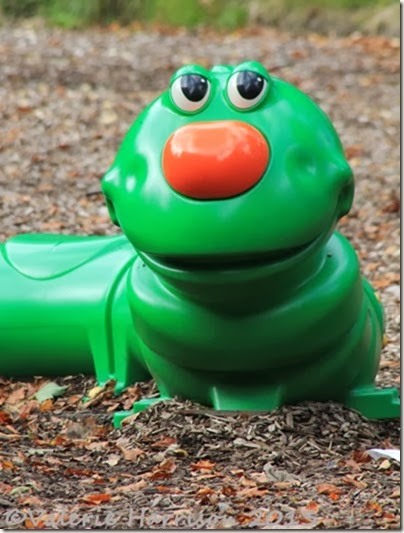 16-caterpillar