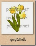 spring daffodils-200_thumb