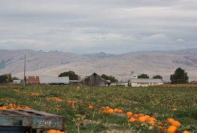 2011-10-10_300