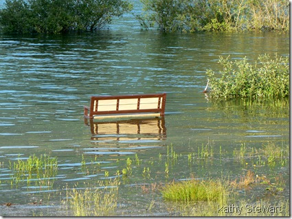 Seat of bench under water