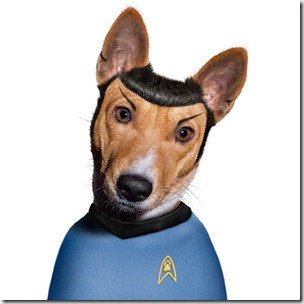 perros disfrazados (3)
