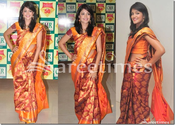 Krupali_Traditional_Silk_Saree