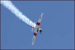 Ardmore Airshow 02-06-2013 - 2 1359