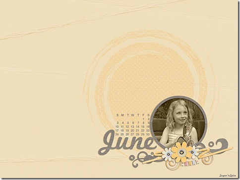 SnS-June2012Desktop-1024x770