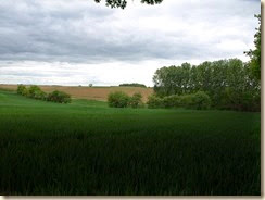 In het veld tussen Liek en Batsheers