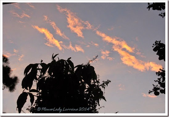 07-13-sunrise4