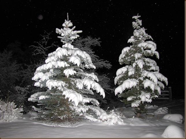 Nov snowfall2 09