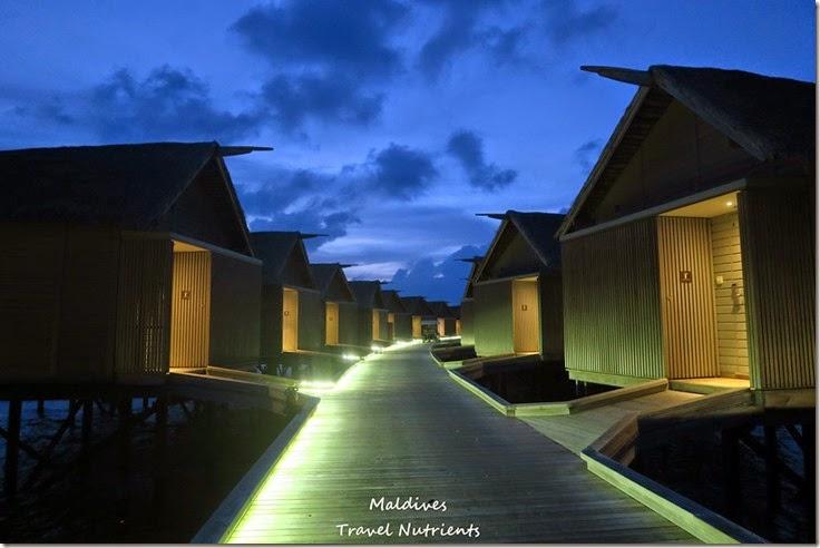 馬爾地夫 Centara渡假村 (60)