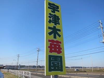 IMG_4544.JPG