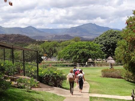 Obiective turistice Mauritius: Casela Park
