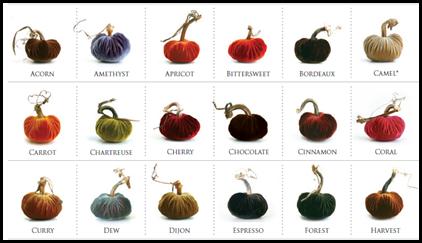 velvet pumpkins, page 1
