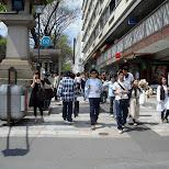 Omotesando street in Harajuku in Harajuku, Tokyo, Japan