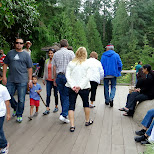busy day at the Capilano Suspension Bridge in North Vancouver, British Columbia, Canada