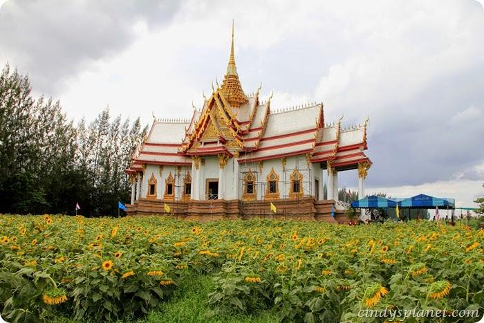 Bangkok164