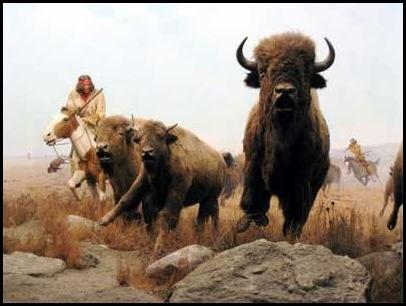Le massacre des bisons en Amérique-12