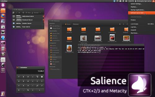 Salience 1.0 su Ubuntu