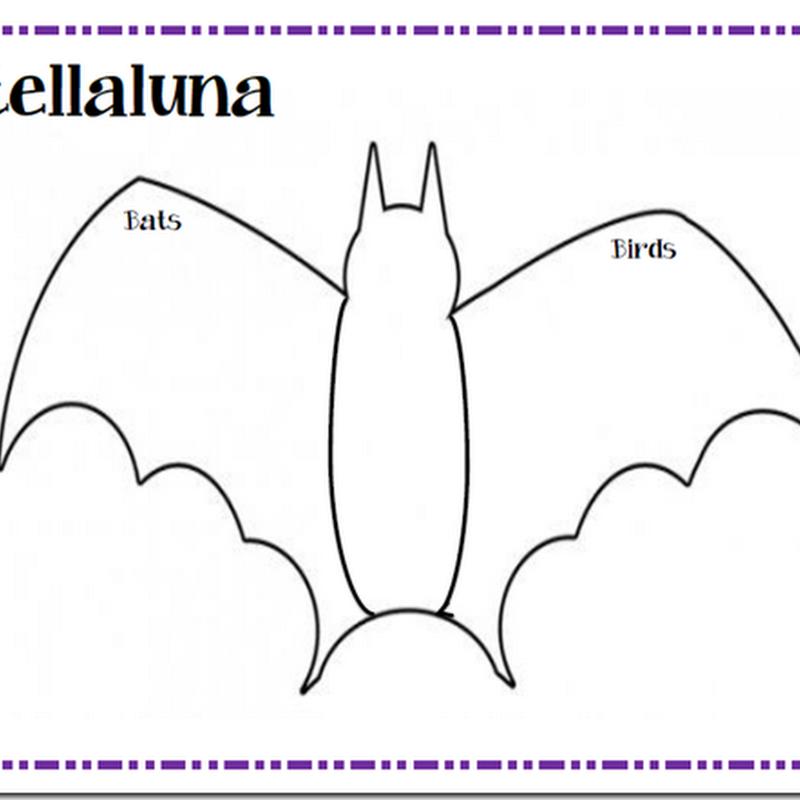 First Grade Fanatics: Story Retell Printable