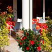 La terrazza (bar) posta all\'ingresso