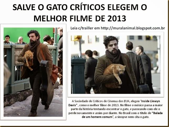 SALVE O GATO CRÍTICOS ELEGEM O MELHOR FILME