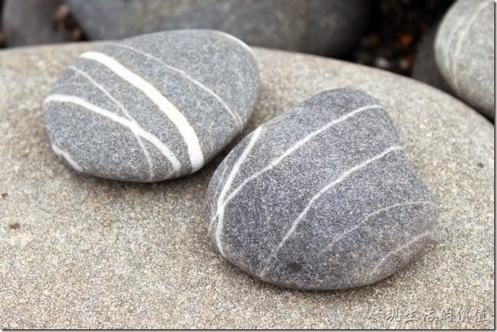 下了旭海草原後,來牡丹灣旁的海邊檢石頭,這兩塊想把牠們畫成小丑魚。