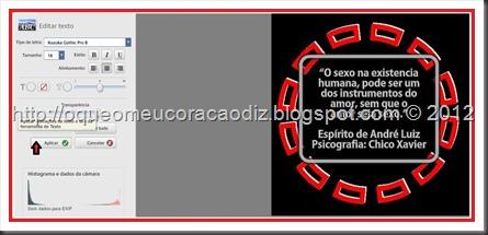 Imagem 10