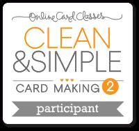 CS2_participant