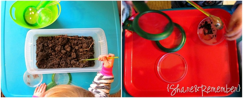 worm center in preschool