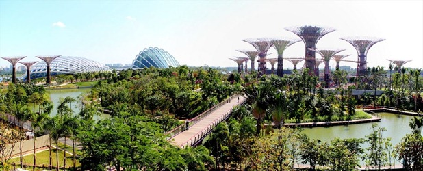 gardens by the bay by grant associates and wilkinson eyre architects 5