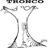 TRONCO.jpg