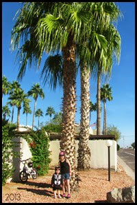 girls palm tree