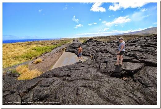 140724_HawaiiVolcanoesNP_0105