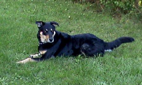 ailen 19-09-2011 005