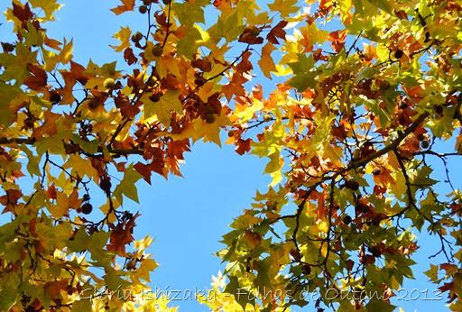 Glória Ishizaka - Outono 2013 - 31