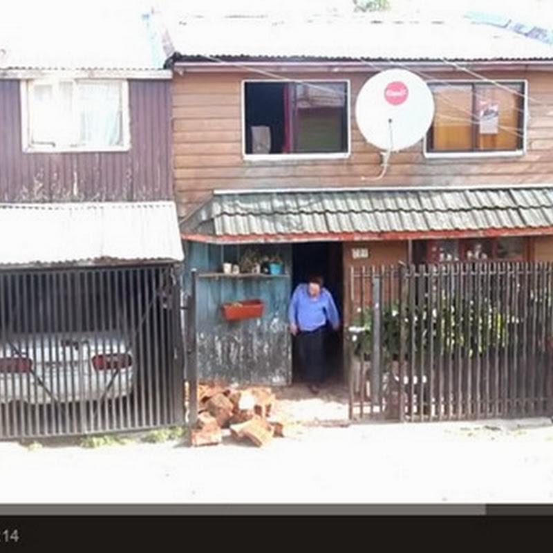 Σκύλος βοηθά  το αφεντικό του
